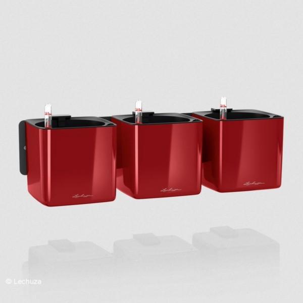 Lechuza Green Wall Home Kit Glossy scarlet rot highgloss 13525